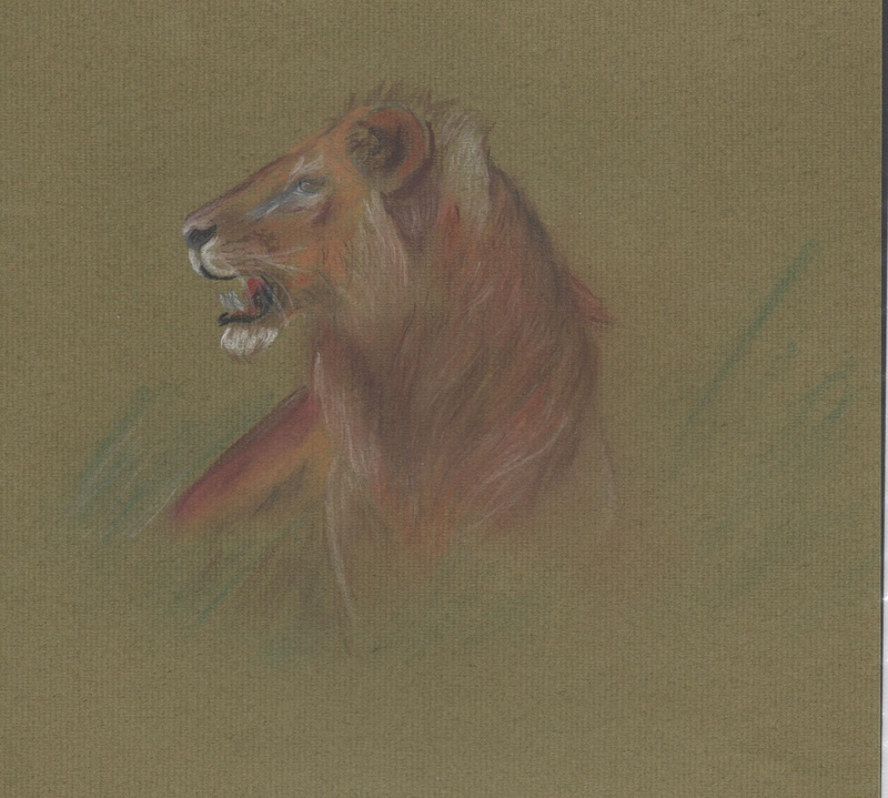 pastel drawing of a lion